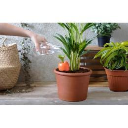 Auto-riego plantas - CARE-IT