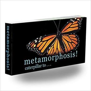 Libro - MINILIBRO DIAPORAMA - METAMORPHOSIS MARIPOSA